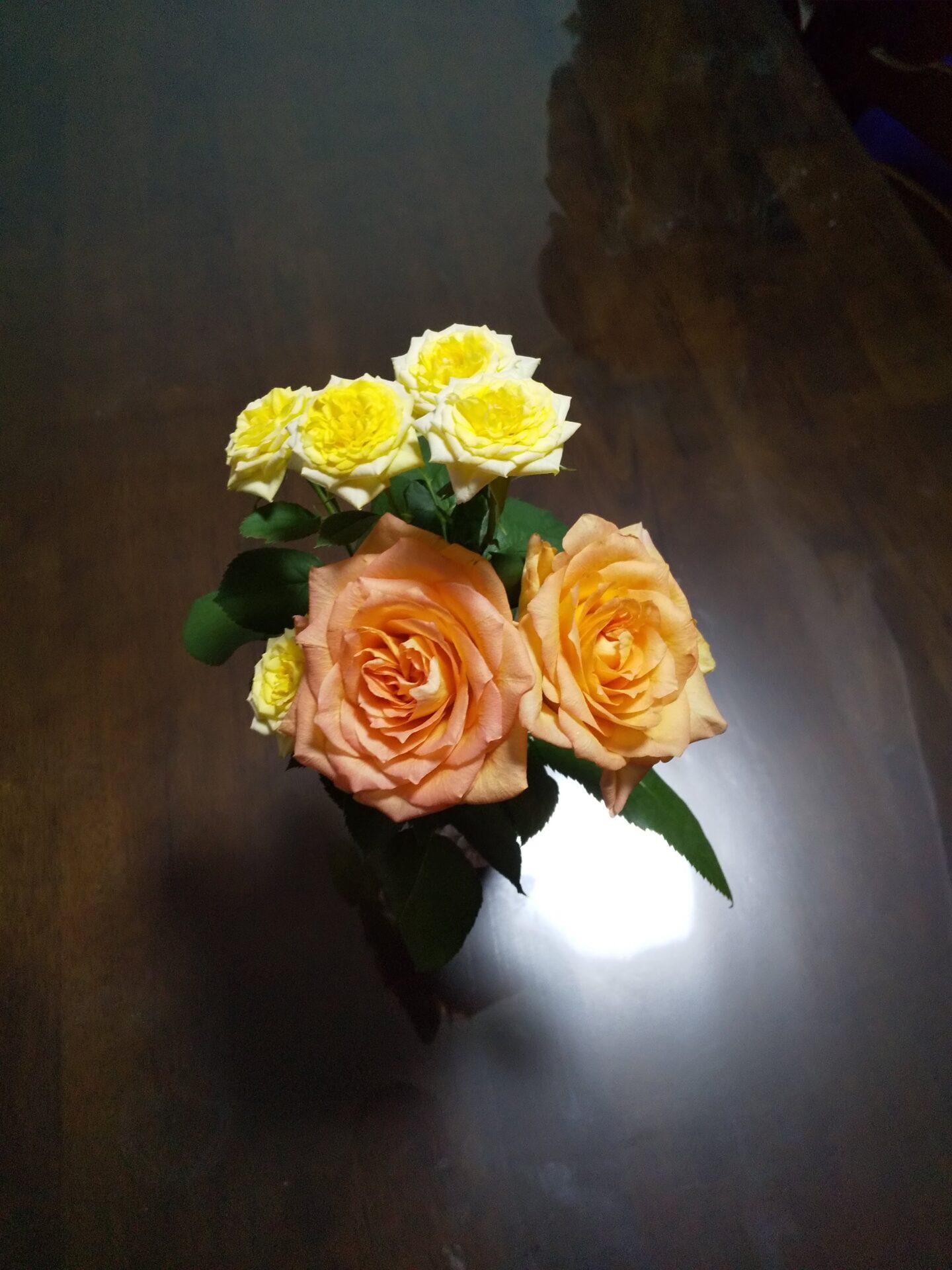 花とセッション